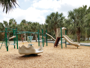 Friends of Birch State Park Accomplishments Limitless Playground