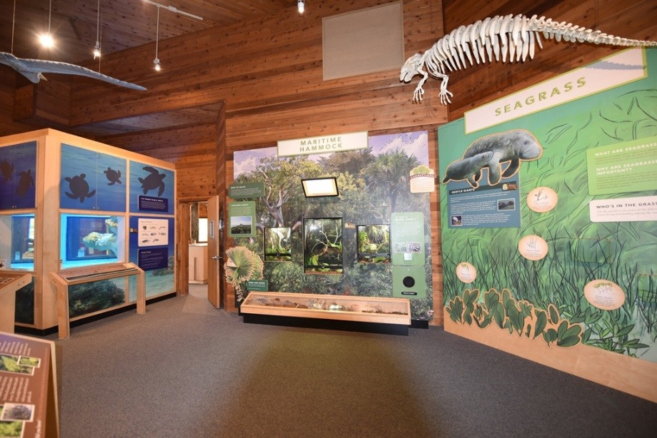 Education Exhibit Example for Hugh Taylor Birch State Park