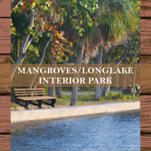 bench-campaign-mangroves-longlake2