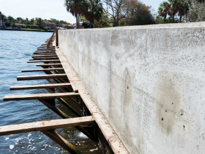 Friends of Birch State Park Accomplishments Phase I - Seawall Restoration After