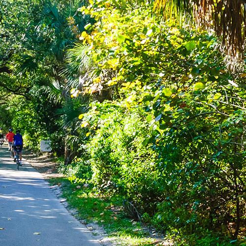 hugh_taylor_birch_state_park_bike_path